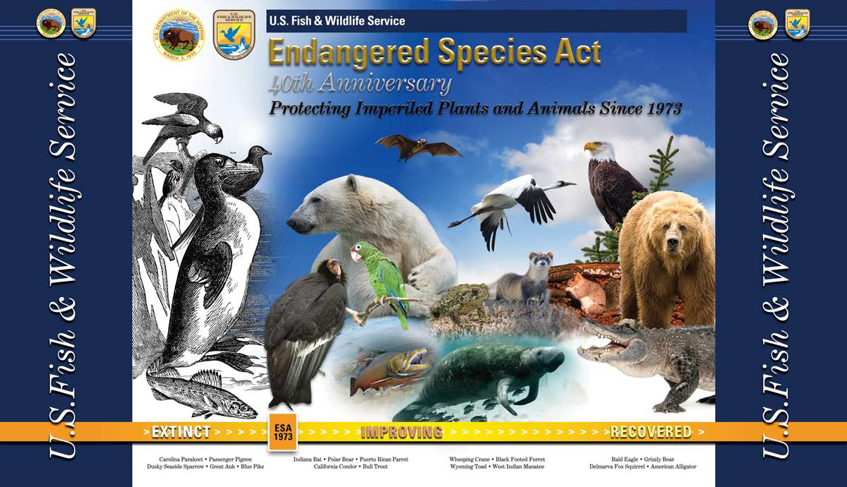 Endangered Spciies Act 1977, 40th anniversary